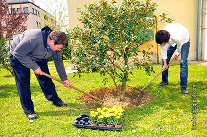 Ekološka radionica - uređenje školskog okoliša